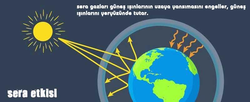 seragazları Etkisi dnzhoca.com