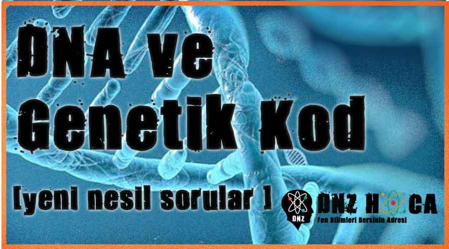 8. Sınıf 2. Ünite DNA ve Genetik Kod - LGS Yeni Nesil Özel Sorular Dnz Hoca 12